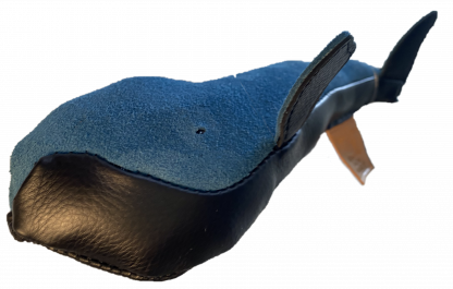 Leather Right Whale from the Greenland Fishery Project