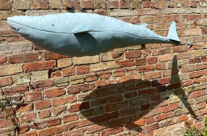 Blue Leather Whale