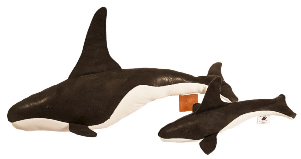 The Greenland Fishery Project's Orca and Young