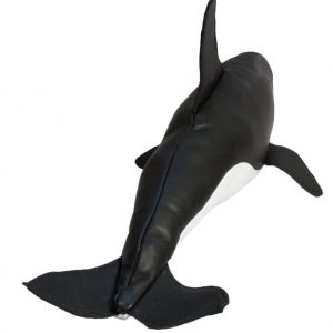 GFP Orca or Killer Whale