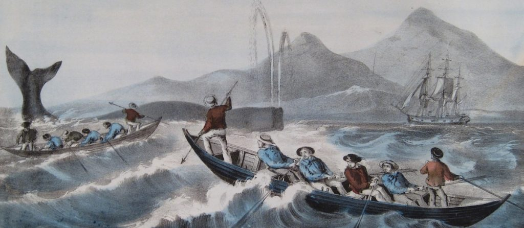 Early whaling in New England